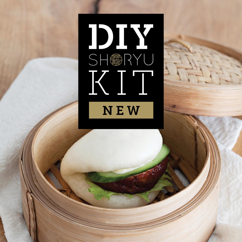 DIY Shoryu Kits